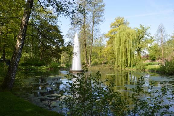 Foto Stadtpark CS
